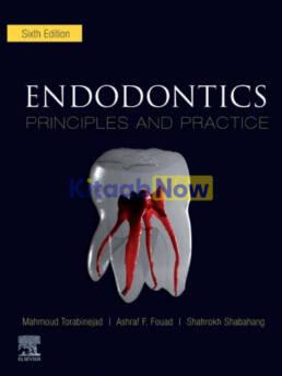Endodontics Principles And Practice