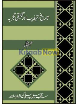 Tarikh, Tehzeeb Aur Takhliqi Tajarba